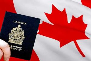 تأشيرات كندية للبيع شوك ترعرع بعد قدوم دونالد ترامب