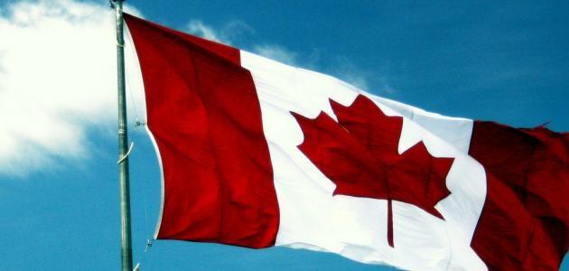 تعرف على الفرق بين الهجرة واللجوء إلى كندا وأيها أفضل