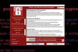 اليوروبول يحذر من تصاعد خطر الهجوم الإلكتروني اليوم