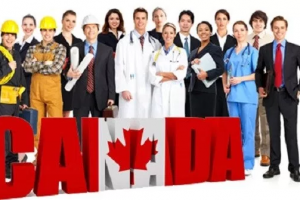 تعرف على بنود عرض التوظيف في كندا وما هي الجهات الرسمية المسؤولة عن موافقات والعقود