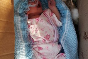 بالصور العثور على طفل رضيع داخل صندوق ارانب ميته في ام الدنانير بمحافظة البلقاء
