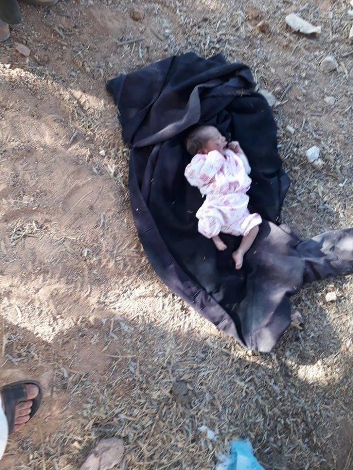 image 3 - بالصور العثور على طفل رضيع داخل صندوق ارانب ميته في ام الدنانير بمحافظة البلقاء
