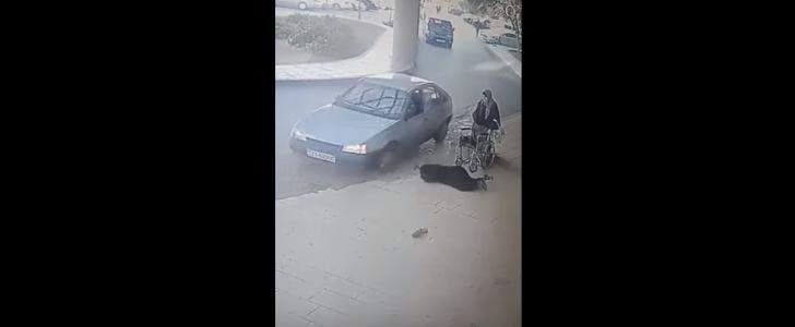 حادث دهس مروع لسيدة تجلس على كرسي متحرك أمام مستشفى الأمير حمزة