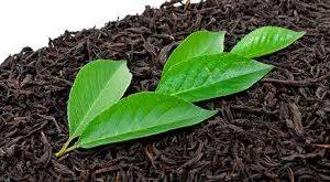 فوائد وأضرار الشاي الأسود (Black Tea)