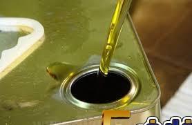 إنتاج كميات زيت الزيتون قدرت بي 20 ألف طن في عجلون