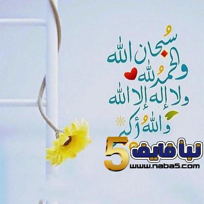 020 - فضائل الحمد لله وصور خلفيات الحمد لله جميلة وراقية