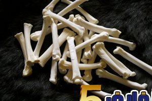 تفسير رؤية عظام في المنام