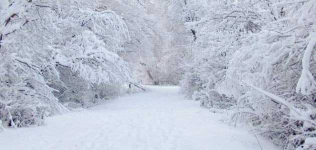 تفسير رؤيا الثلج في المنام للإمام  جعفر الصادق